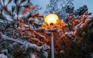 Фото Анапа зимой