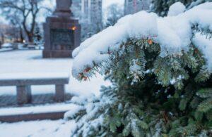 Фото зима в Анапе