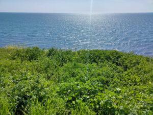 Фото вид на Черное море от Анапского маяка