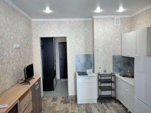 Комната и кухня