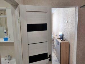 Квартира студия вид от входной двери