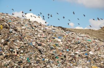 Краснодарский край тонет в мусоре