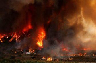 Путин назвал беспрецедентным масштаб природных бедствий в регионах РФ