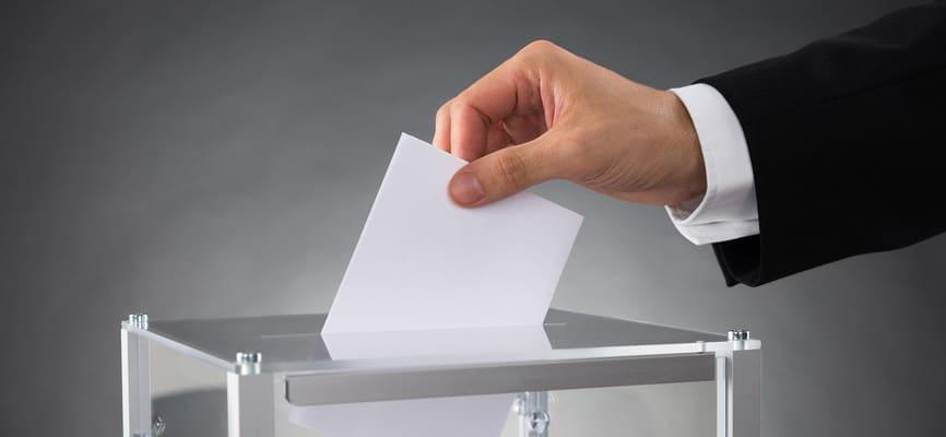 Выборы в Анапе